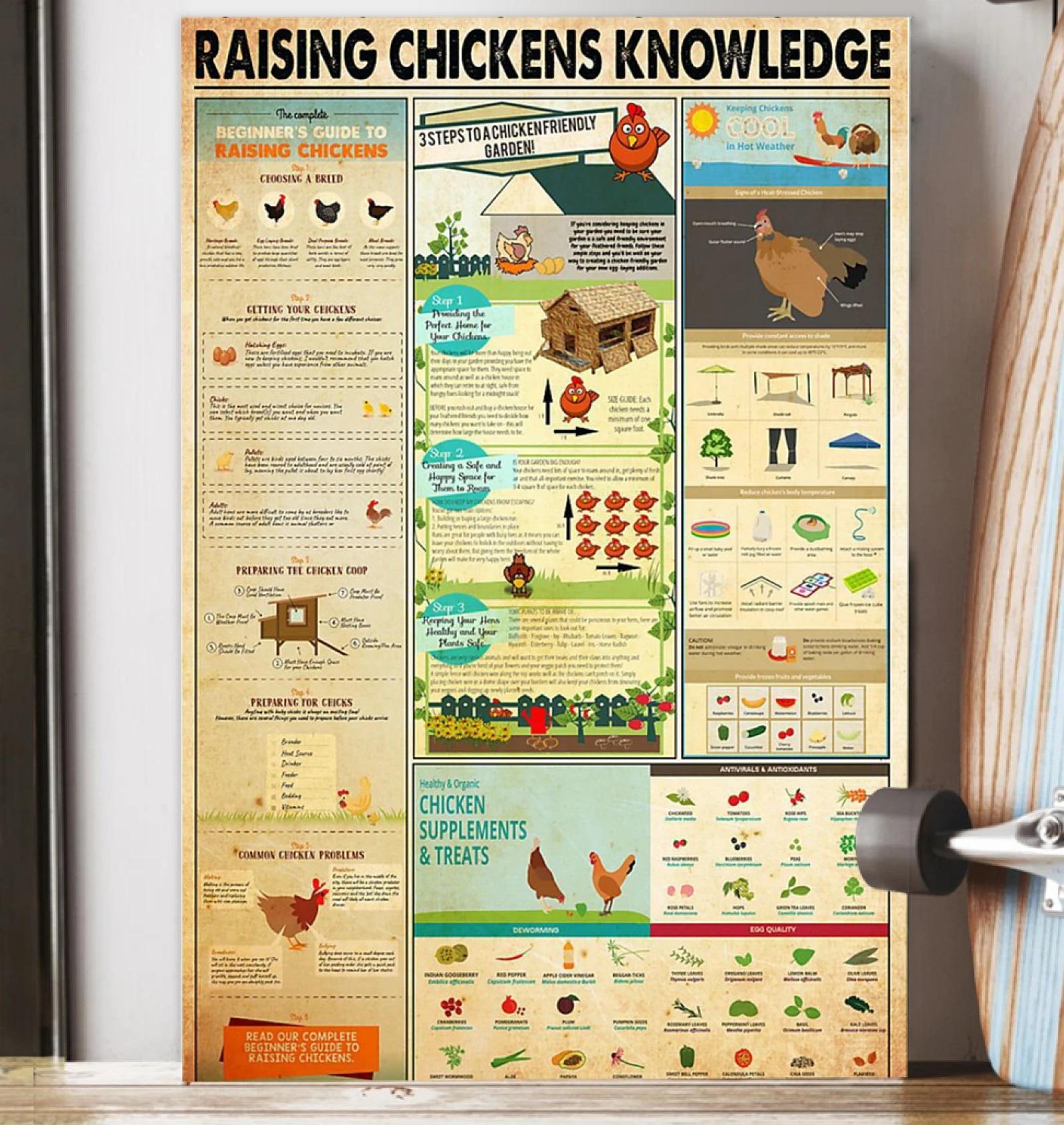 Raising Chickens Knowledge Poster - tml