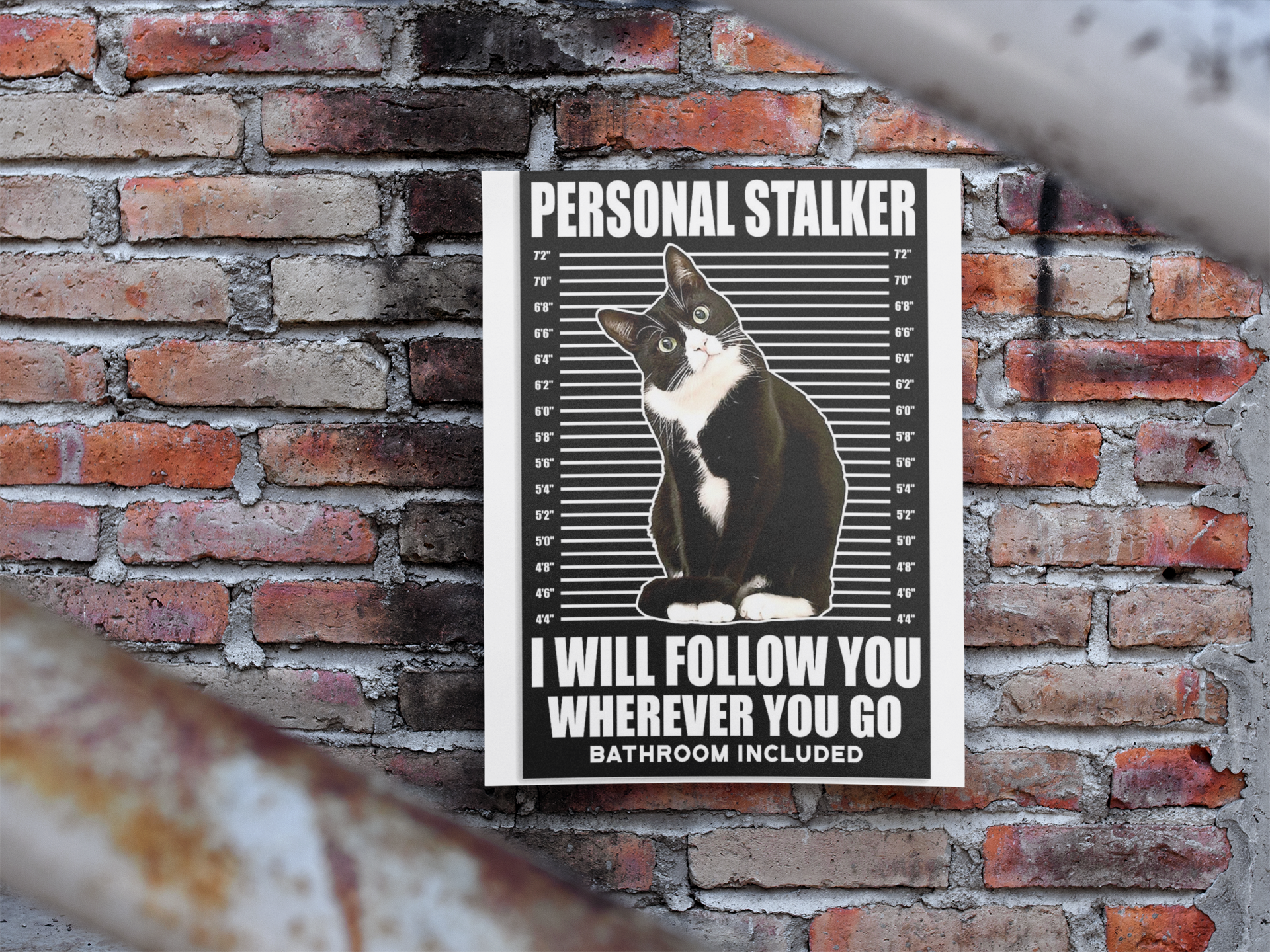 Cat Personal stalker I will follow you wherever you go bathroom included poster