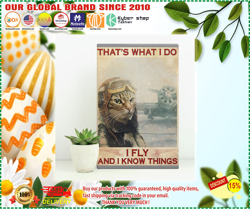 Cat That's what  I do I fly and I know things poster - LIMITED EDITION BBS