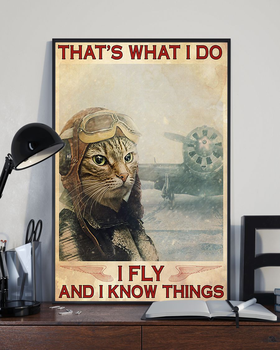 Pilot Cat That's what  I do I fly and I know things poster