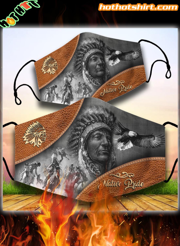 Native America Pride face mask