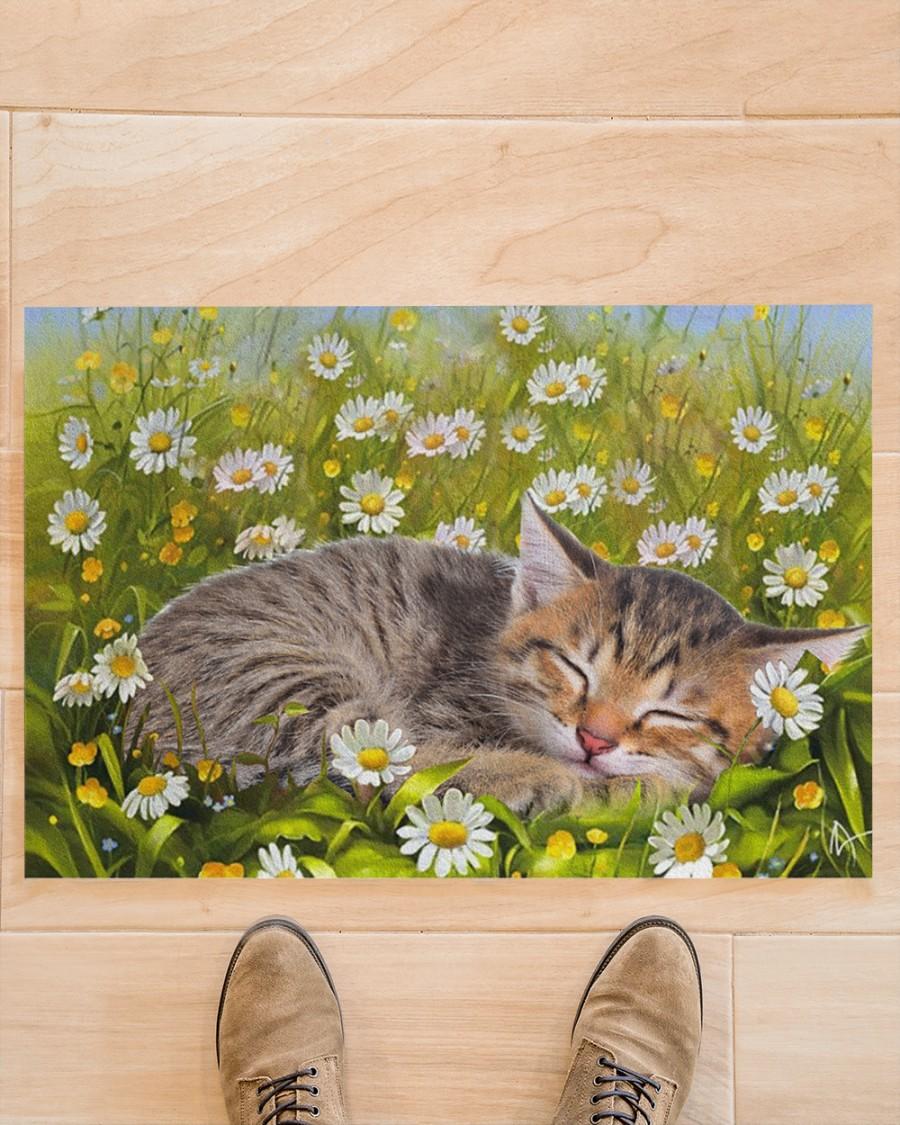 Cat sleeping on flower garden doormat