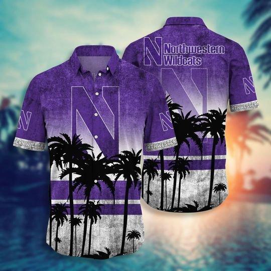 Northwestern Wildcats NCAA1 Hawaiian Shirt And Short - BBS