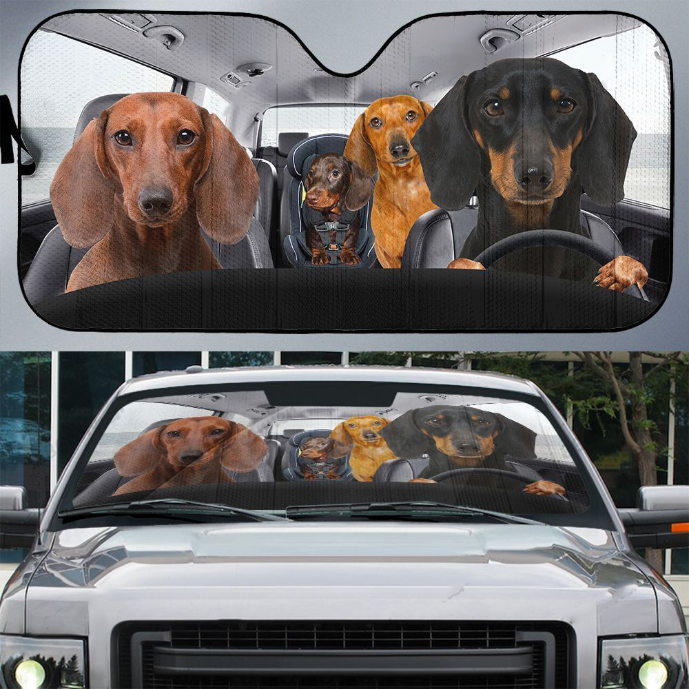 Dachshunds family driving car sunshade - Picture 1